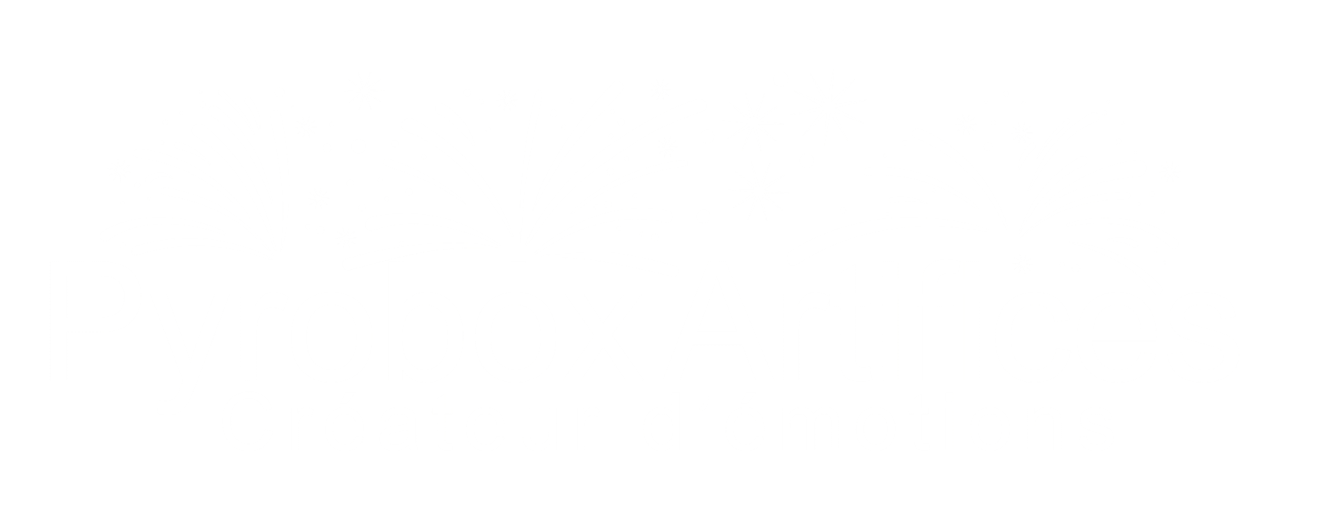logo-pyrobox-artifices-blanc
