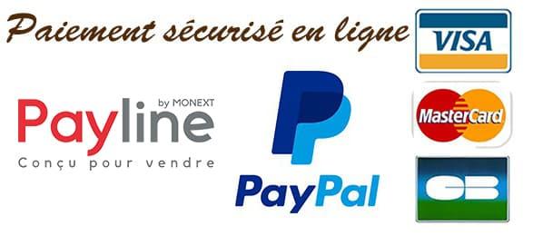 Mode de paiement sécurisé sur le site Pyrobox Artifices (CB Visa ou Mastercard avec Payline, Paypal, chèque, virement bancaire, mandat administratif)