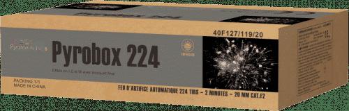 Ceci est l'image d'un feu d'artifice automatique Pyrobox 224 - produit phare de la gamme Pyrobox Artifices, LE spécialiste de l'artifice de divertissement dans tout le Massif central - www.pyrobox-artifices.com